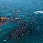 Ortigia Sup Race: La Sicilia protagonista